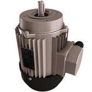 ERW Motor Gearboxes: Electric motors for greenhouse